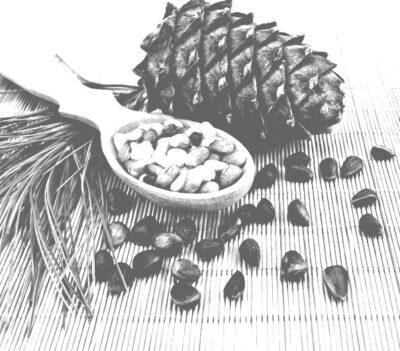 Кедровый орех. Экспорт